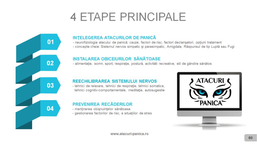 4 etape principale AP